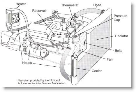 Dannys Radiator -Basics